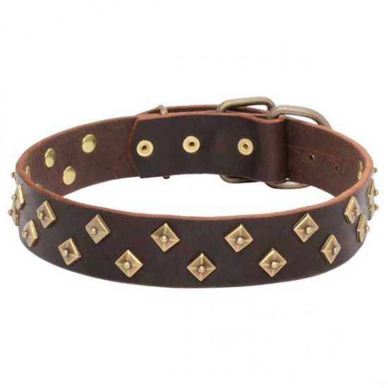 Outstanding Quality Genuine Leather Dog Collar with Brass Pyramids