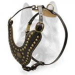 Royal Leather Padded Dog Harness -Design Studded Comfy Harness