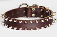 Spiked Leather Dog Collar- 2 Rows of spikes collar for all dogs