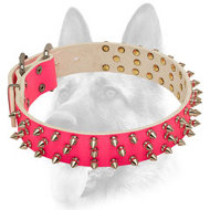 Designer Pink Leather Dog Collar with Shiny Spikes for Schutzhund