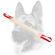 Fire Hose Dog Bite Tug With 2 Handles for Dog Training
