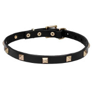 """Modern Style"" Leather Dog Collar with Brass Studs"