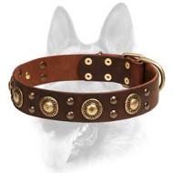 Splendid Dog Leather Collar with Brass-Covered Decorations