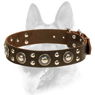 """Rock N Roll"" Style Leather Dog Collar"