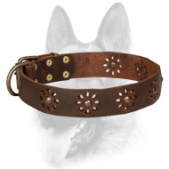 Excellent Leather Dog Collar with Adorable Decorations