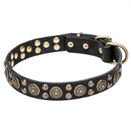 """Boho Style"" Leather Dog Collar with Massive Brass Decorations"