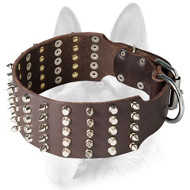 Super Wide Decorated Leather Dog Collar