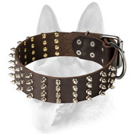 Genuine Leather Spiked Dog Collar