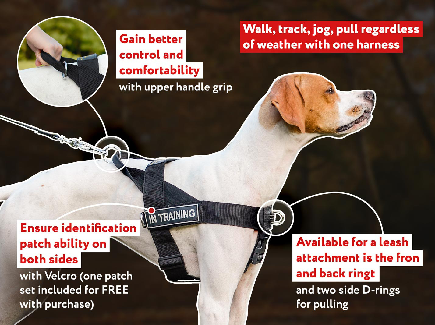 Heavily Stitched Nylon Professional Dog Harness