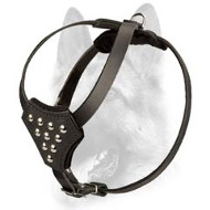 Durable Studded Genuine Leather Puppy Harness