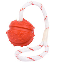 Fun Ball on a Rope for Dog Training