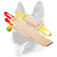 Amazing Set of Jute Bite Tugs for Dog Training