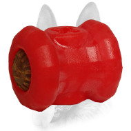 'Yammy Bobbin' Treat Holding Special Rubber Toy - Medium