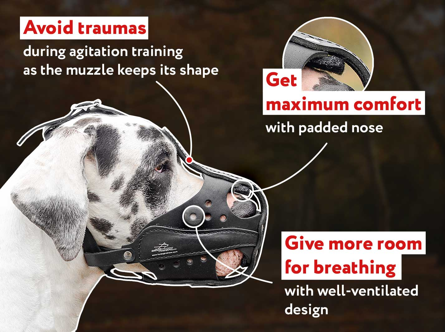 Super Light and Comfortable Leather Dog Muzzle for Attack/Agitation Training