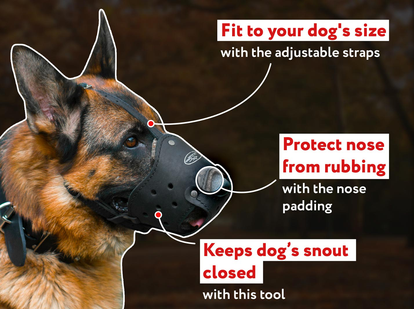 Rottweiler leather dog muzzle - Everyday comfortable dog muzzle