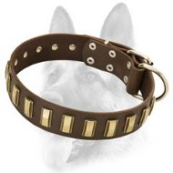 Fascinating Wide Leather Dog Collar With Gold Colored Plates for All Dog Breeds