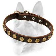 Ornamented Leather Special Dog Collar With Brass Covered Circles
