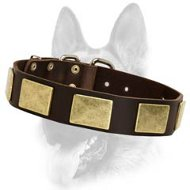 Luxury Leather Dog Collar for Schutzhund training