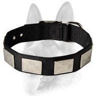Brand Nylon Collar for Working Dog Breeds - Fancy Collar with Massive Plates