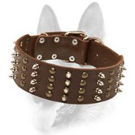 "Working Dogs Spiked & Studded Collar/2"" Wide Leather Special Dog Collar"