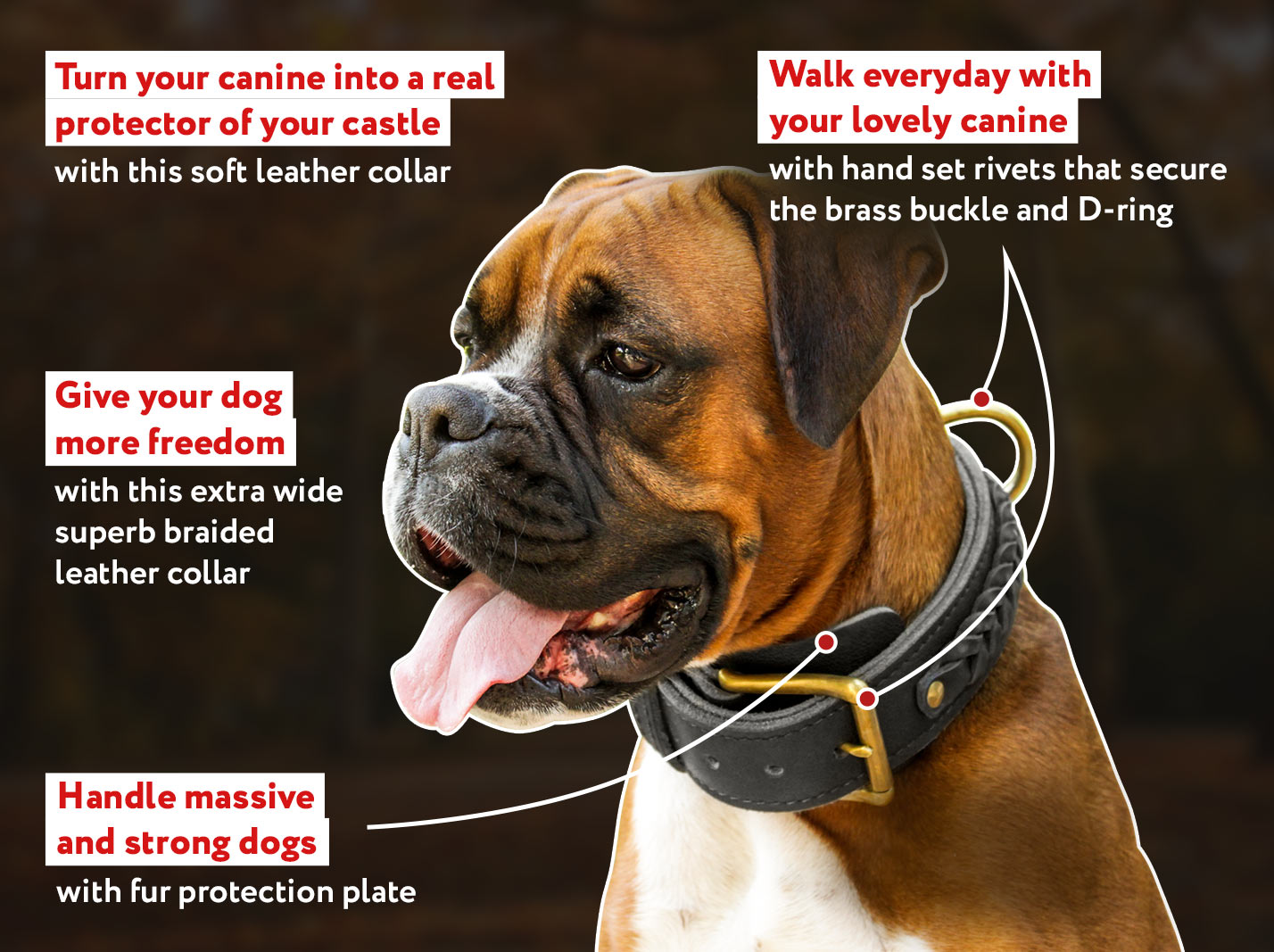 Center D-Ring Leather Dog Collar for Working Dogs