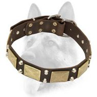 Worthy Leather Dog Collar Ornamented with Antiqued Plates and Pyramids