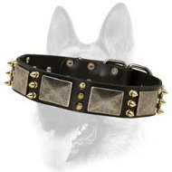 Superb Leather Dog Collar Decorated with Massive Plates+3 Brass Spikes