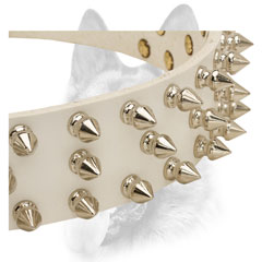 Nickel plated spikes set in three rows