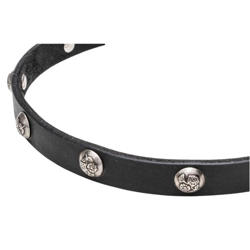 Leather dog collar with manually set nickel studs