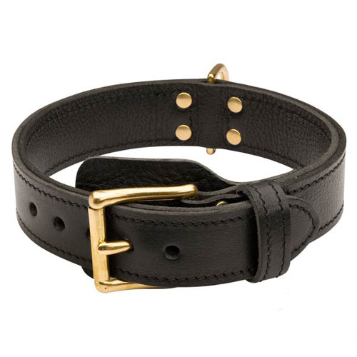 Brilliant design leather dog collar