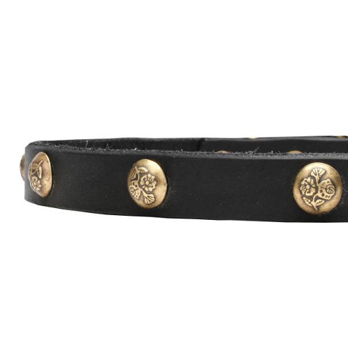 Leather dog collar with manually riveted studs