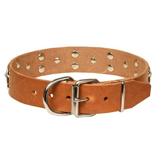 Marvelous tan natural leather dog collar with chrome plated adornment