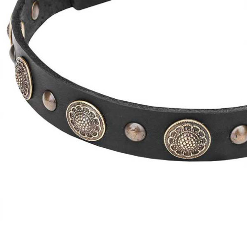 Dog collar with reliably set round studs