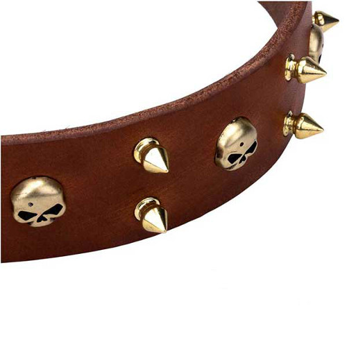 Dependable leather dog collar with skulls and spikes