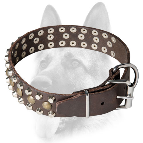 Elegant wide leather dog collar