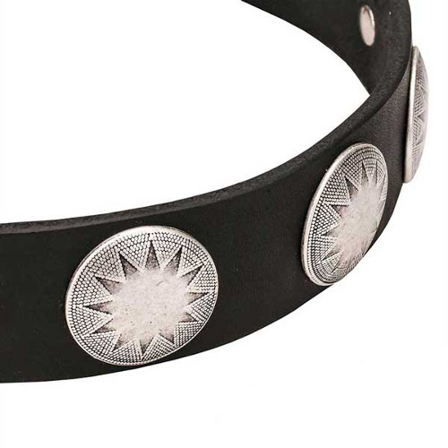 Dog collar with fixed circles