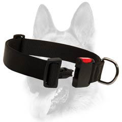 Practical nylon dog collar