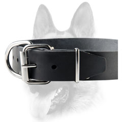 Reliable leather dog with durable hardware