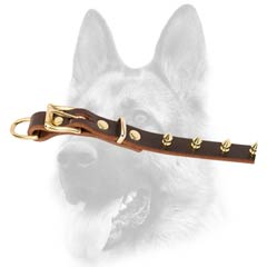 Everyday leather dog collar of good width