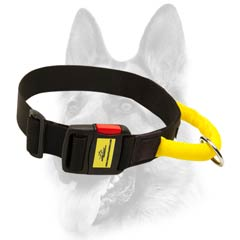 First-class nylon dog collar
