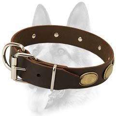 Adjustable leather dog collar for courageous tasks  dogs