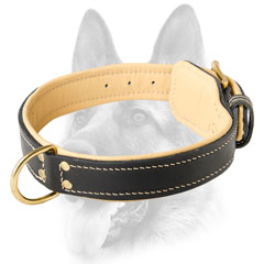 Handworked leather dog collar for working dogs