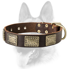 High quality leather dog collar for tasks dogs