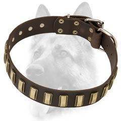 Ornamented leather dog collar