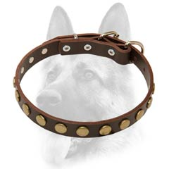 Everyday leather dog collar with decoration