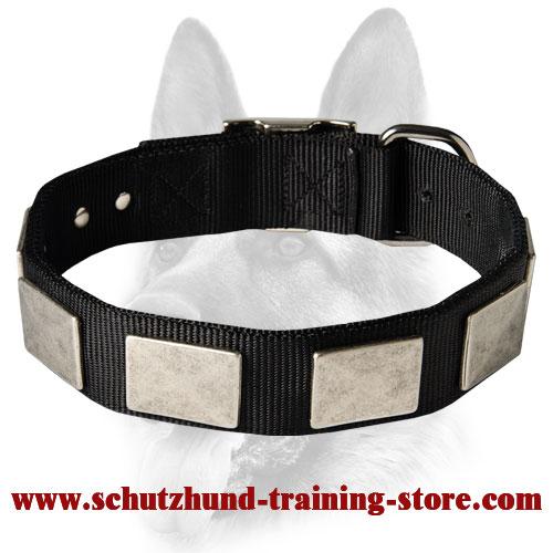 Best Dog Training Collar Pet Supplies Buy