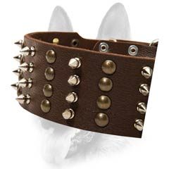 Sophisticated leather dog collar for strong dogs
