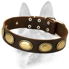 Best-fitted leather dog collar