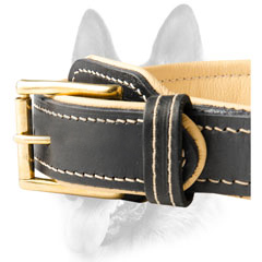 Custom leather dog collar for schutzhund dog breeds