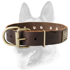 Leather dog collar with durable buckle